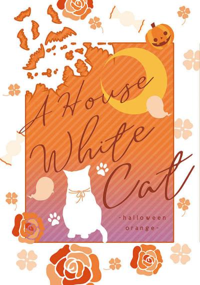 A House WhiteCat ~halloween orange~