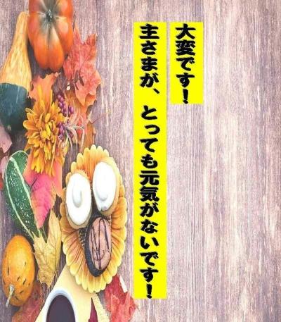 Taihen Desu Shu Samaga Tottemo Genki Ganaidesu
