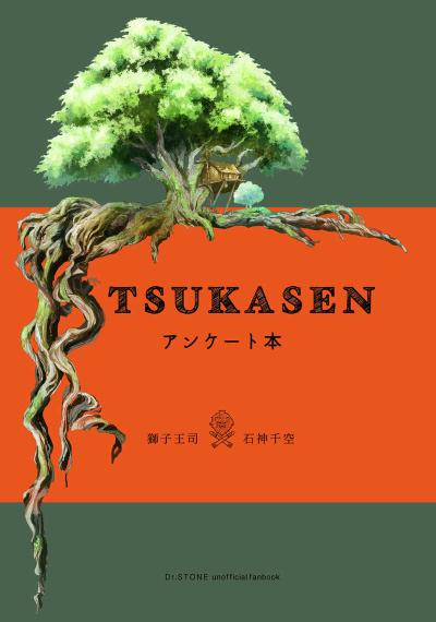 Tsukasa Sen Anketo Hon